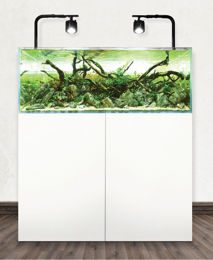 The Aquascaper Aquarium and Cabinets