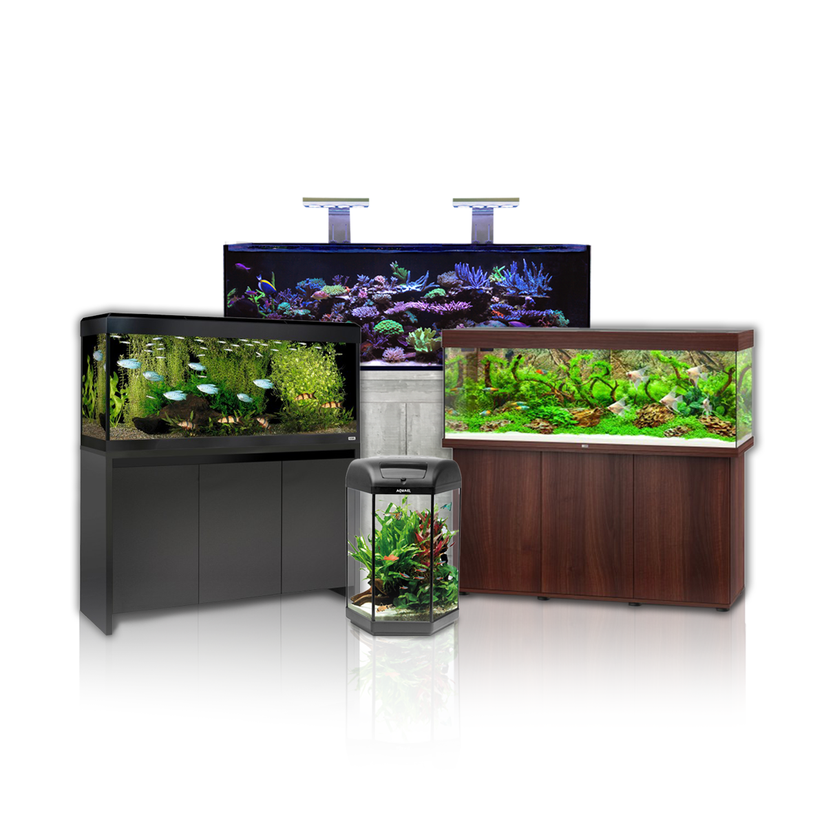 Aquarium Tanks And Cabinets