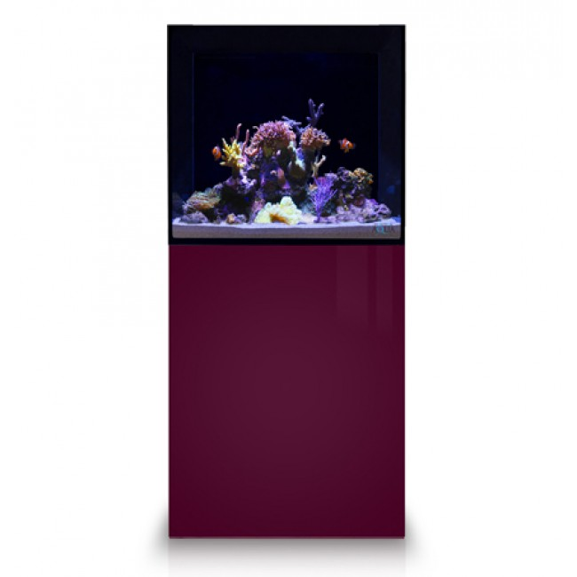 eaReef Aquariums (Sump Filtration)