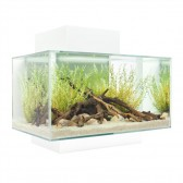 Fluval Edge Aquarium 23 litre in Gloss White LED FREE HEATER