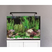 Aqua One AquaNano 60 Tropical Aquarium 100 Litre