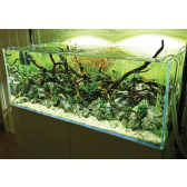 Evo Aquascape 300 Tank and Cabinet Set