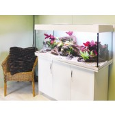 Aqua One AquaVogue 245 Tank & Cabinet White