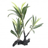 Fluval Willow Leaf Hygrophila Artificial Plant on Root 30cm