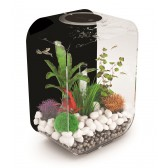 Biorb Life 15 Clear front and sides with Black back