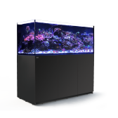Red Sea REEFER XXL 650 Black Reef System