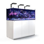 Red Sea REEFER XXL 650 Deluxe White Reef System