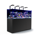 Red Sea REEFER XXL 750 Deluxe Black Reef System
