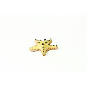 Natureform Choc Chip Starfish - Protoreaster sp Synthetic Coral  6 x 6 x 1.5cm