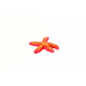 Natureform Red Starfish - Fromiasp.Synthetic Coral  6 x 6 x 1.3cm