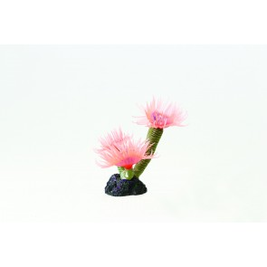 Natureform Feather Duster Pink - Sabellastarte sp. Synthetic Coral 3.5 x 3 x 8cm