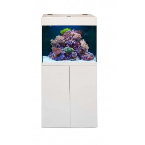 Aqua Medic Kauderni with Ocean Light LED System (rear tank filtration)