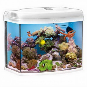 Aquael Reef Master 60 Aquarium in White