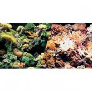 "Marina Aquarium Background Reef / Coral 18"" per ft"