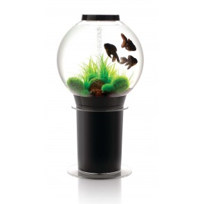 Biorb 105 Aquarium in Black with iLED