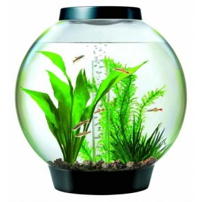 Biorb 30 Litre Aquarium Black No Light
