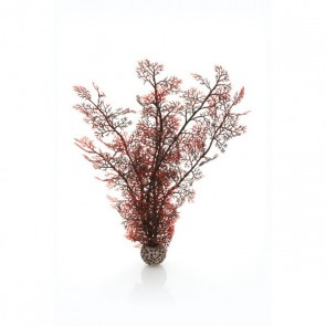 Biorb Sea Fan Crimson Small