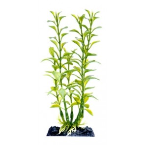 """Penn Plax Blooming Ludwigia Green 7\"""" Artificial Plant with base"""