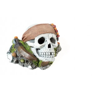 Classic Pirate Skull Ornament Aquarium Ornament