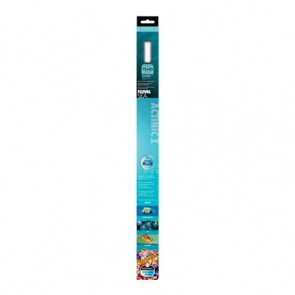 "Fluval Actinic T5 24w 55cm 22"" Light Tube Bulb"