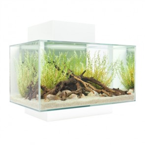 Fluval Edge Aquarium 23 litre in Gloss White with FREE HEATER!