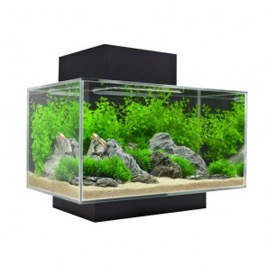 Fluval Edge Aquarium 23 litre in Gloss Black with FREE HEATER !