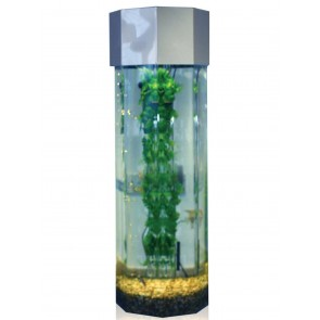 Octagon 3ft High Column Aquarium Wide Type in silver