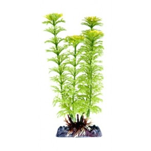 "Penn Plax Green Ambulia 6"" Artificial Plant with base"