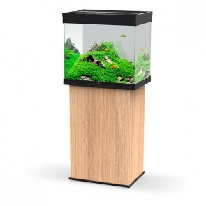 Ciano Emotions Pro 60 Aquarium and Cabinet Amber Wood in Black