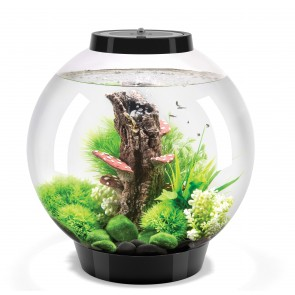 Biorb Classic 30 Litre Black with MCR LED