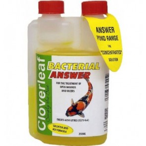 Cloverleaf Pot Perm Answ 250ml