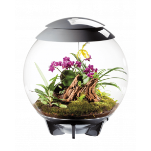Biorb Air 60 Ltr Terrarium in Grey