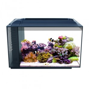 Fluval SEA Evo 52L Aquarium