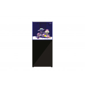 L'Aquarium 250ltr Black (Default)1