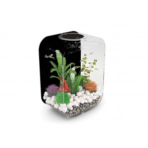 Reef One Biorb Life 15 Black Background Clear