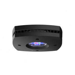 AI Prime 16 HD LED Black