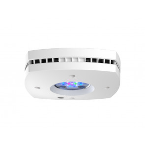AI Prime 16 HD LED White