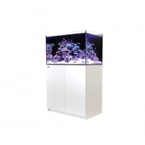 Red Sea Reefer 250 White CLEARANCE