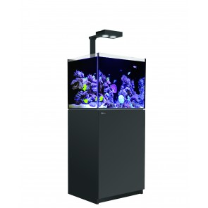 Red Sea Reefer 170 Delux Black