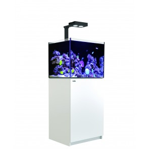 Red Sea Reefer 170 Deluxe White