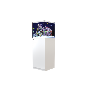 Red Sea Reefer Nano White