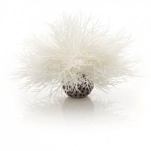 Biorb Sea Lilly White